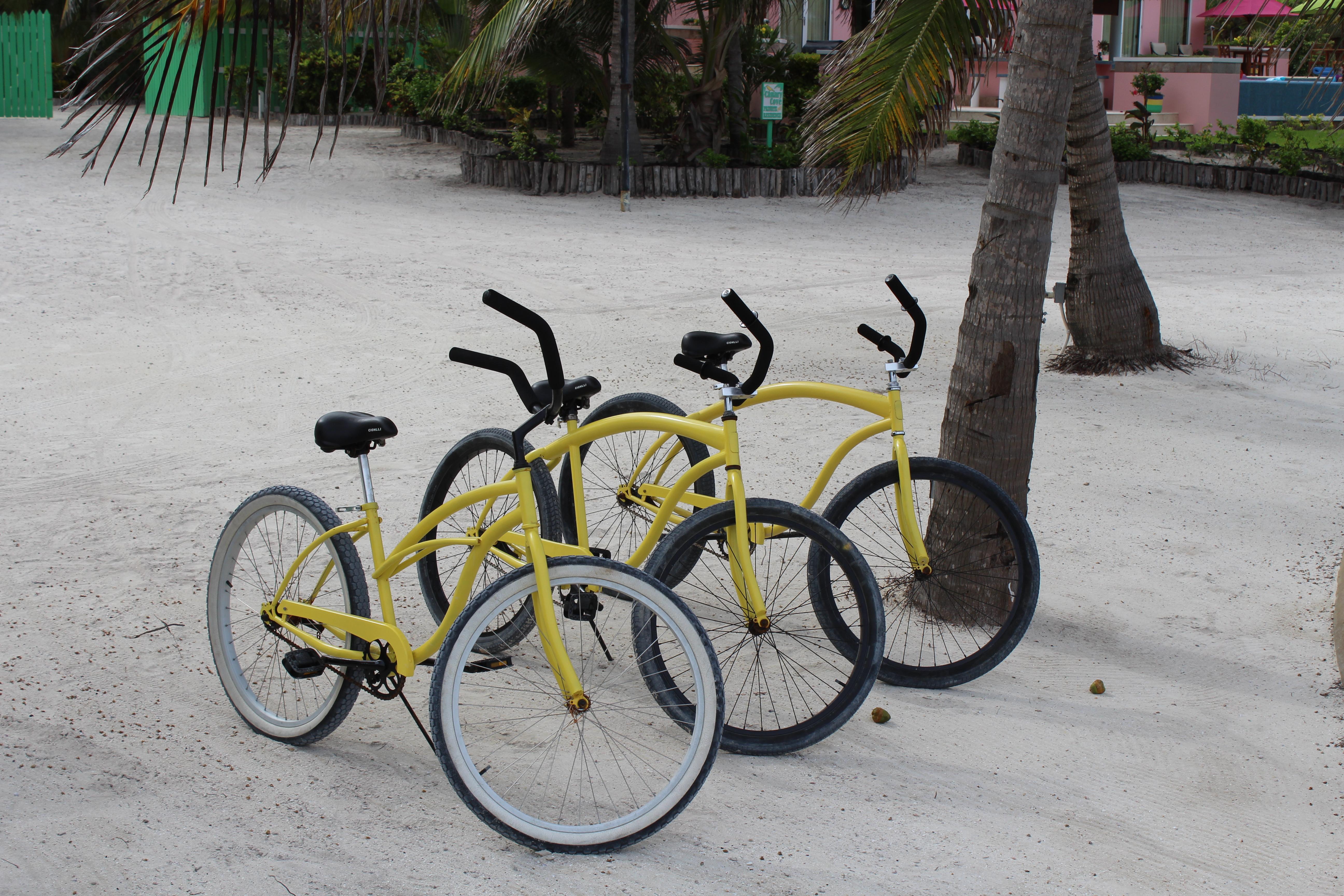 Canary Cove Beach Bikes